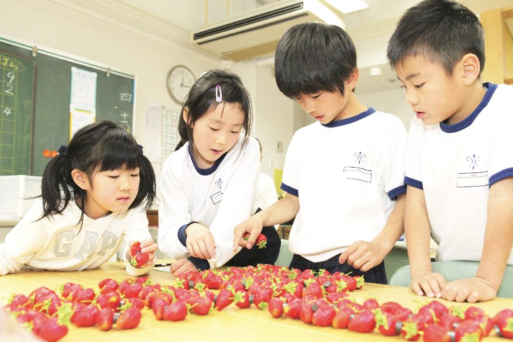 湘南学園小学校03
